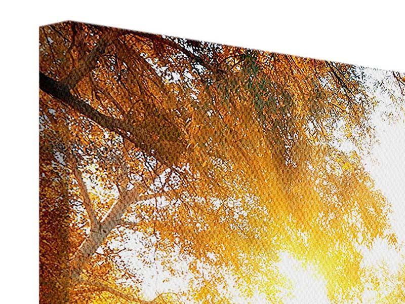 Leinwandbild 4-teilig modern Waldspiegelung im Wasser