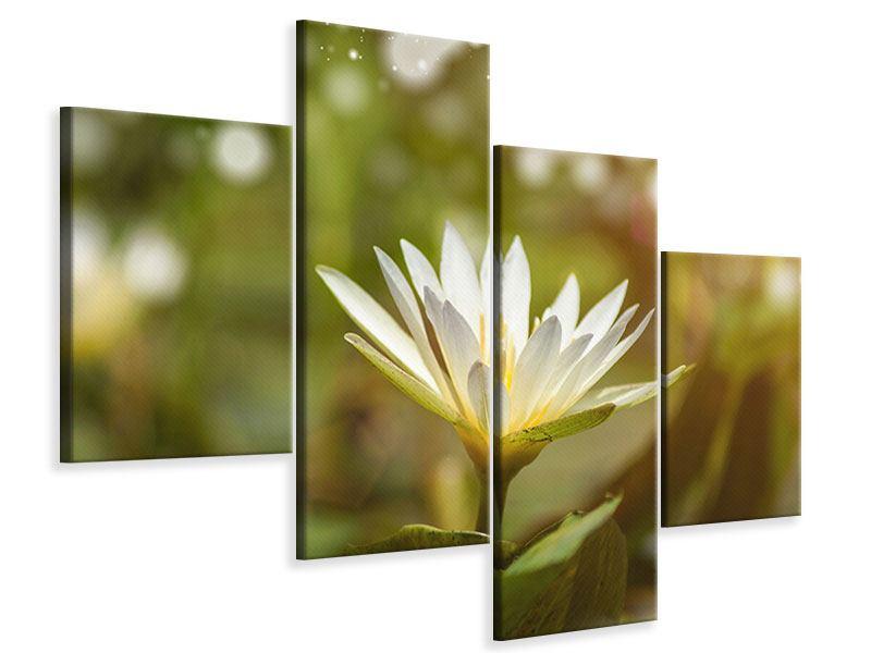 Leinwandbild 4-teilig modern Lilien-Lichtspiel