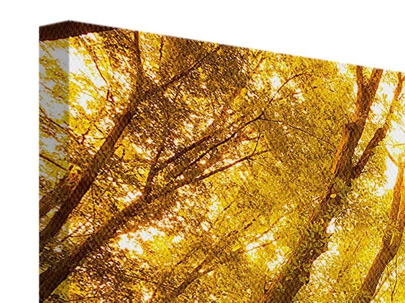 Leinwandbild 4-teilig modern Herbstwald