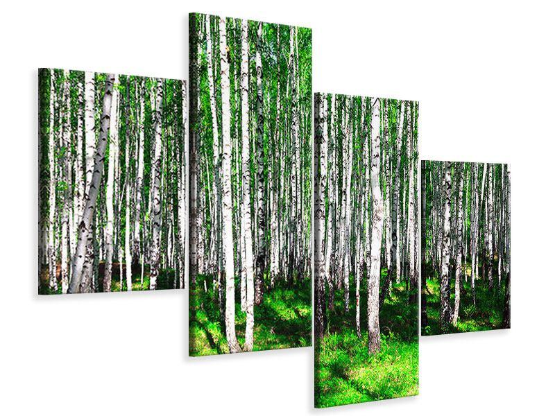 Leinwandbild 4-teilig modern Sommerlicher Birkenwald