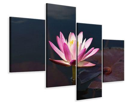 Leinwandbild 4-teilig modern Seerose in der Abenddämmerung