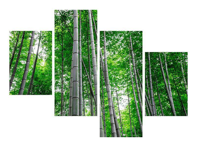 Leinwandbild 4-teilig modern Bambuswald
