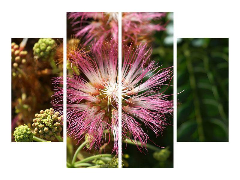 Leinwandbild 4-teilig Die Regenbaumblüte