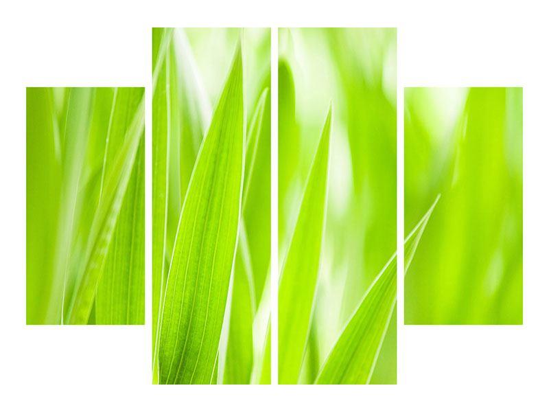 Leinwandbild 4-teilig Gras XXL