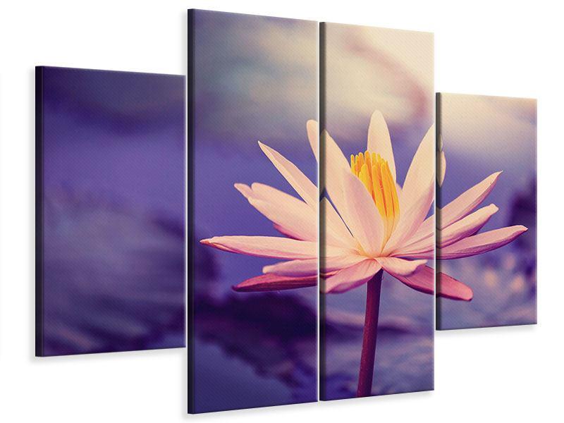 Leinwandbild 4-teilig Lotus bei Sonnenuntergang