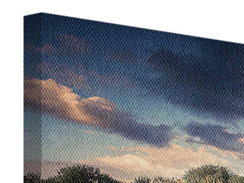 Leinwandbild 4-teilig Die Wiesenmargerite am Fluss