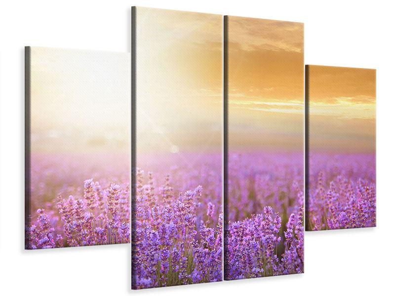 Leinwandbild 4-teilig Sonnenuntergang beim Lavendelfeld