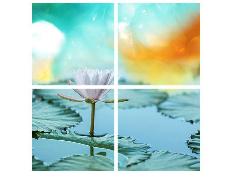 Leinwandbild 4-teilig Verträumte Lotus