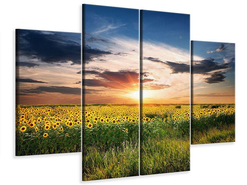 Leinwandbild 4-teilig Ein Feld von Sonnenblumen