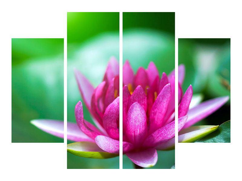 Leinwandbild 4-teilig Lotus in Pink