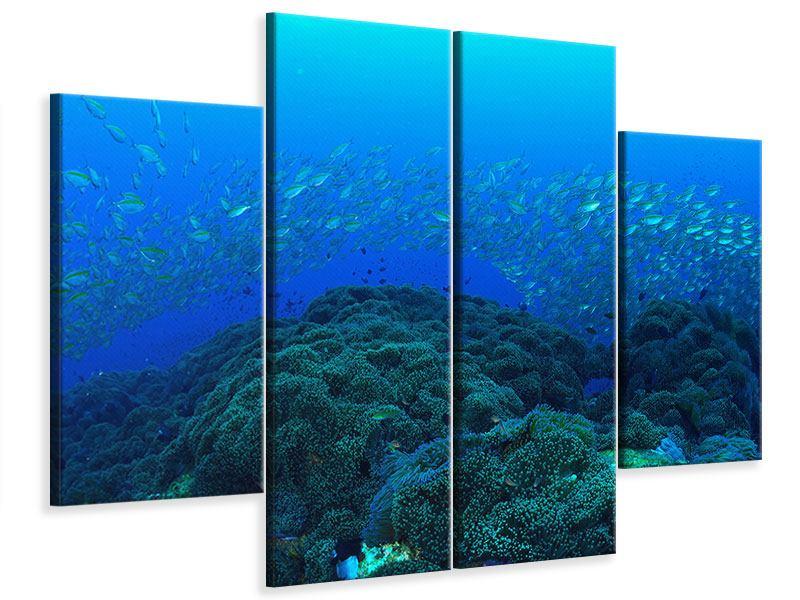 Leinwandbild 4-teilig Fischschwärme