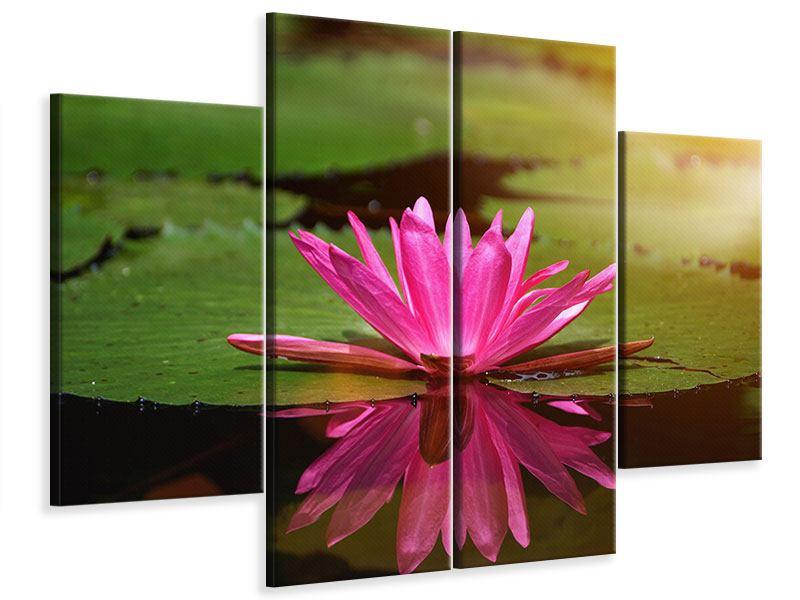 Leinwandbild 4-teilig Lotus im Wasser