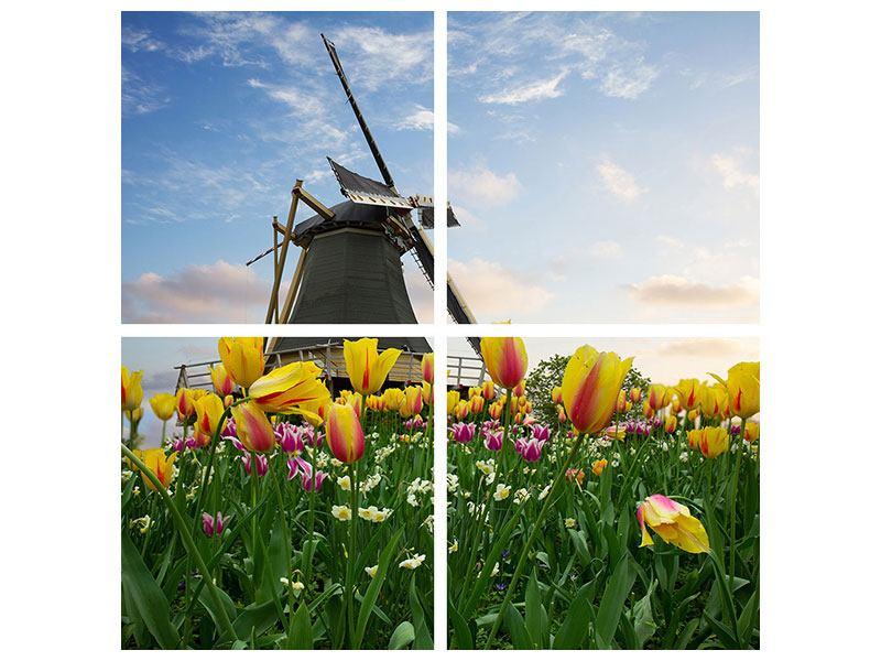 Leinwandbild 4-teilig Die Windmühle mit den Tulpen
