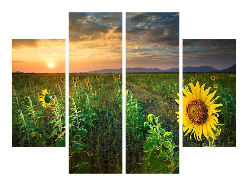 Leinwandbild 4-teilig Sonnenblumenfeld im Abendrot