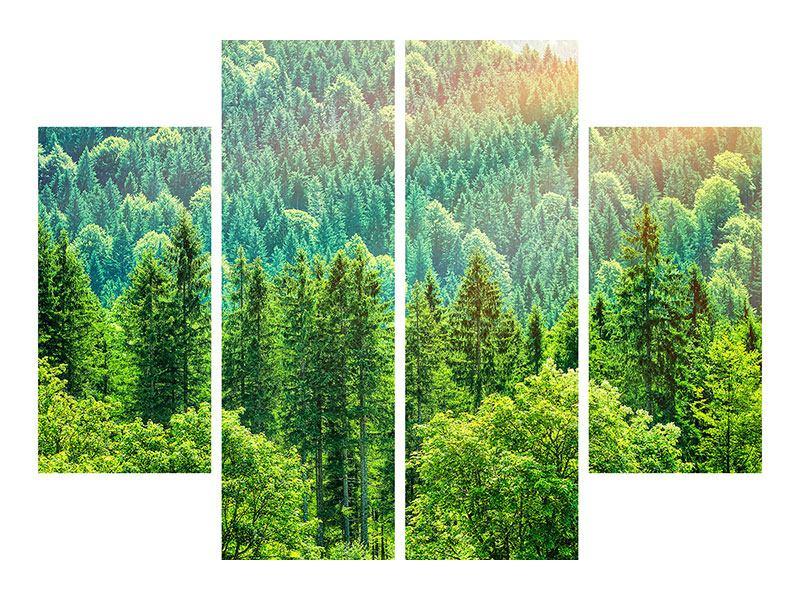 Leinwandbild 4-teilig Der Waldhügel