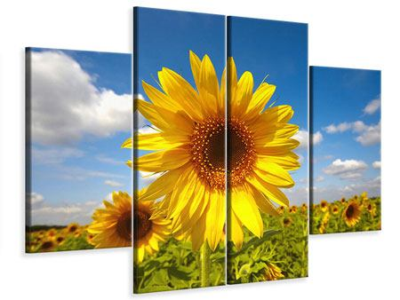 Leinwandbild 4-teilig Das Feld der Sonnenblumen