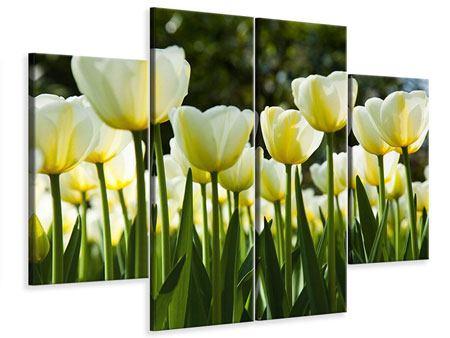 Leinwandbild 4-teilig Tulpen bei Sonnenuntergang