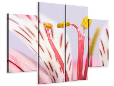 Leinwandbild 4-teilig Close Up Die exotische Schönheit