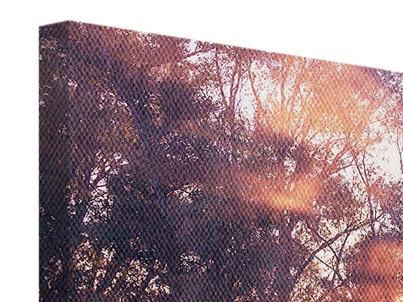 Leinwandbild 4-teilig Die Waldspiegelung
