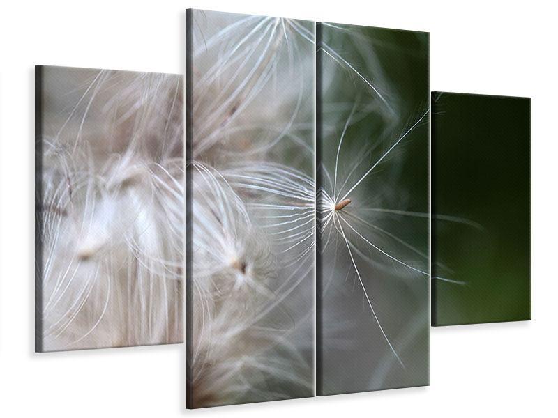 Leinwandbild 4-teilig Close up Blütenfasern