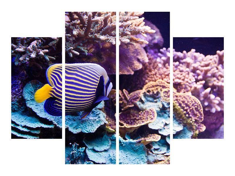 Leinwandbild 4-teilig Faszination Unterwasser