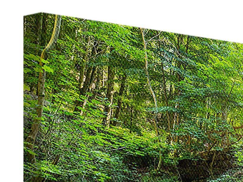 Leinwandbild 4-teilig Wasserspiegelungen