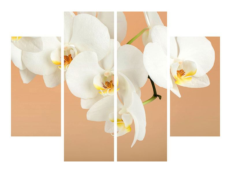 Leinwandbild 4-teilig Weisse Orchideenblüten