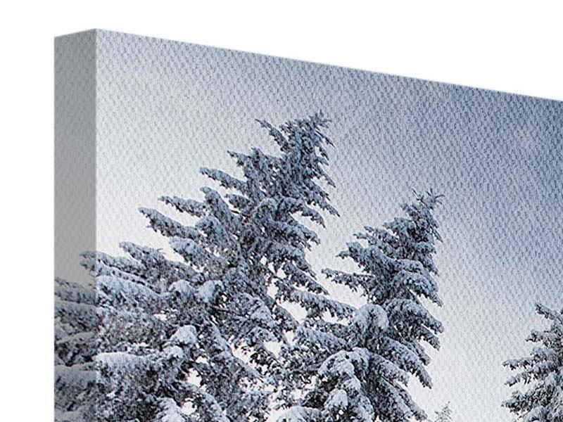 Leinwandbild 4-teilig Wintertannen