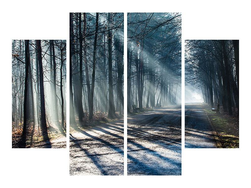 Leinwandbild 4-teilig Wald im Lichtstrahl