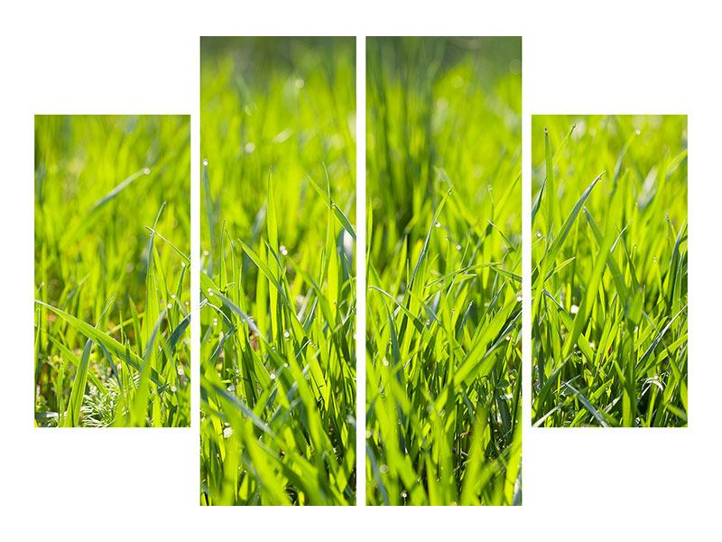 Leinwandbild 4-teilig Gras im Morgentau