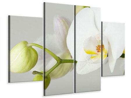 Leinwandbild 4-teilig Riesenorchidee