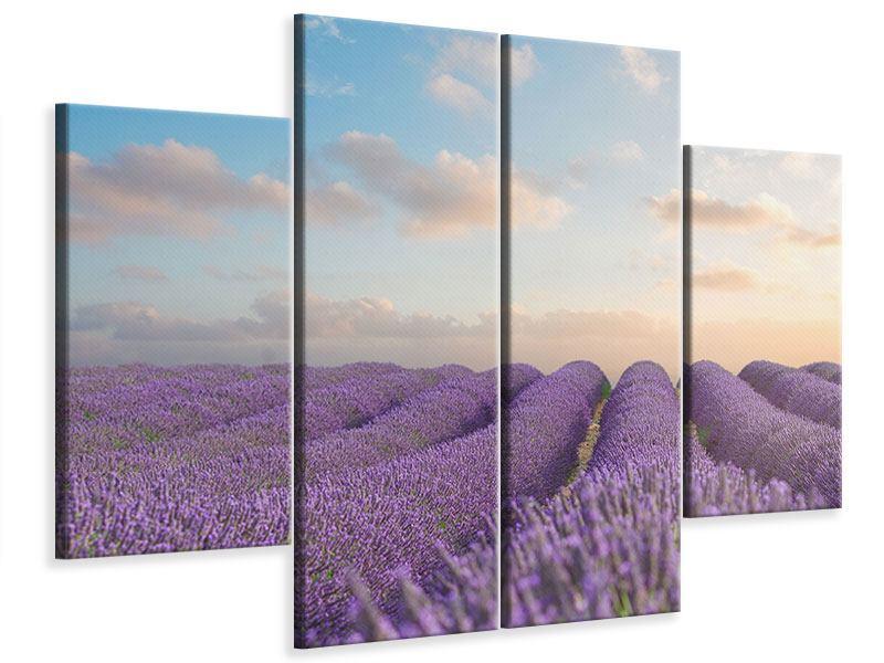 Leinwandbild 4-teilig Das blühende Lavendelfeld