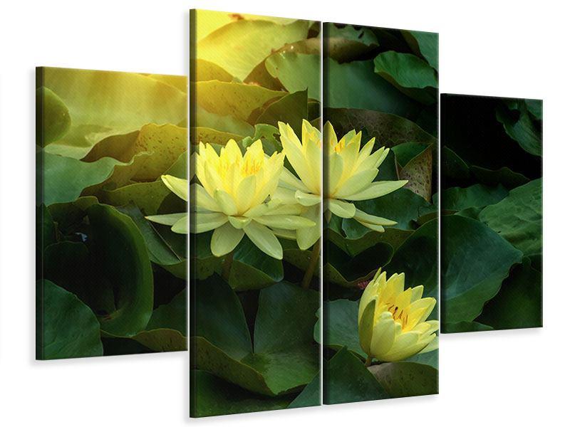 Leinwandbild 4-teilig Wilde Lotus