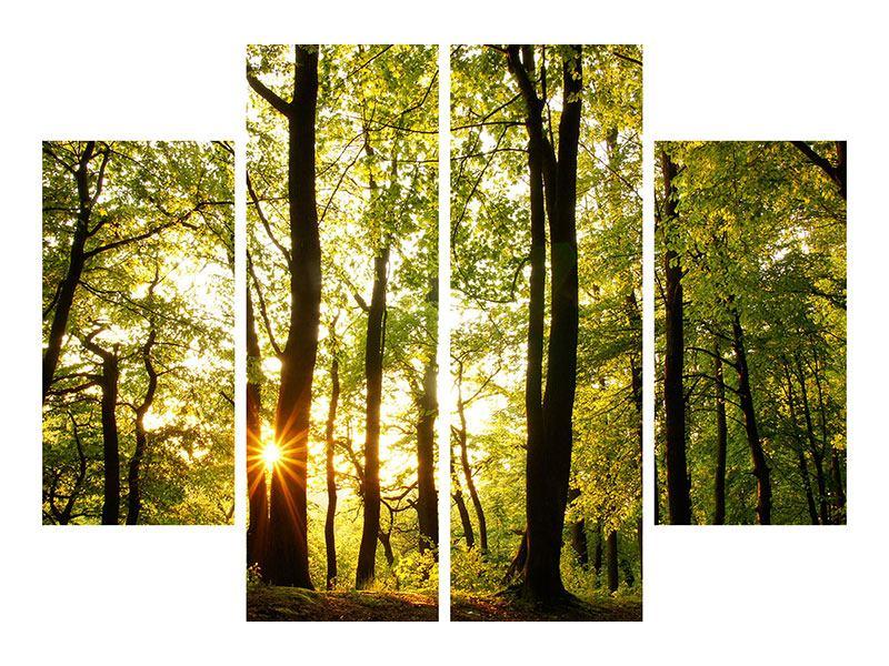 Leinwandbild 4-teilig Sonnenuntergang zwischen den Bäumen
