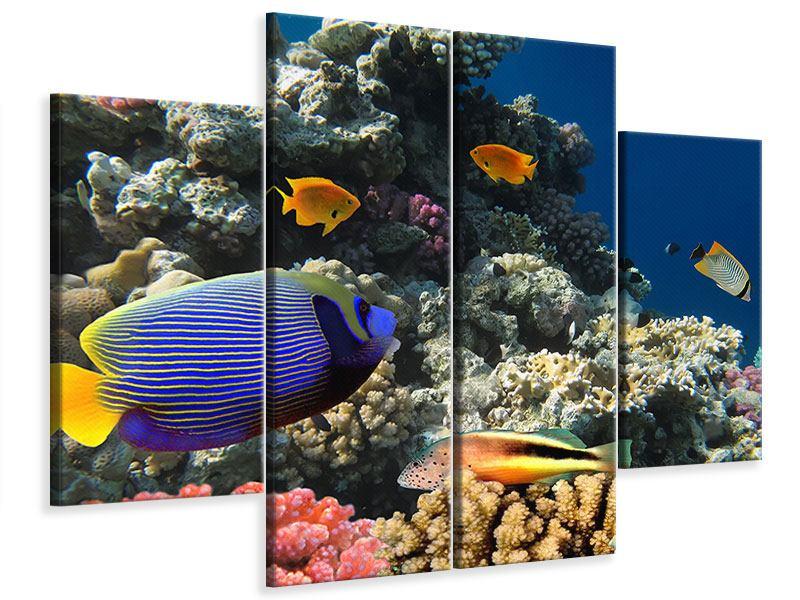 Leinwandbild 4-teilig Das Aquarium