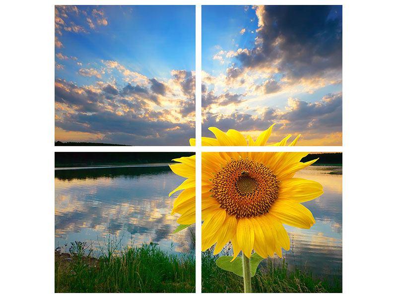 Leinwandbild 4-teilig Sonnenblume am See