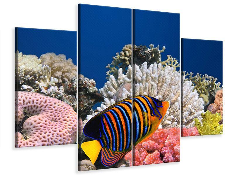 Leinwandbild 4-teilig Mit den Fischen tauchen