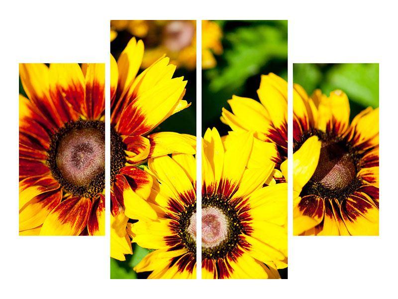 Leinwandbild 4-teilig Reife Sonnenblumen