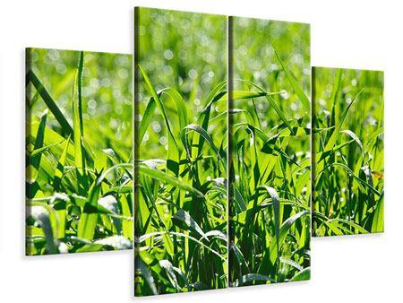 Leinwandbild 4-teilig Sonniges Gras