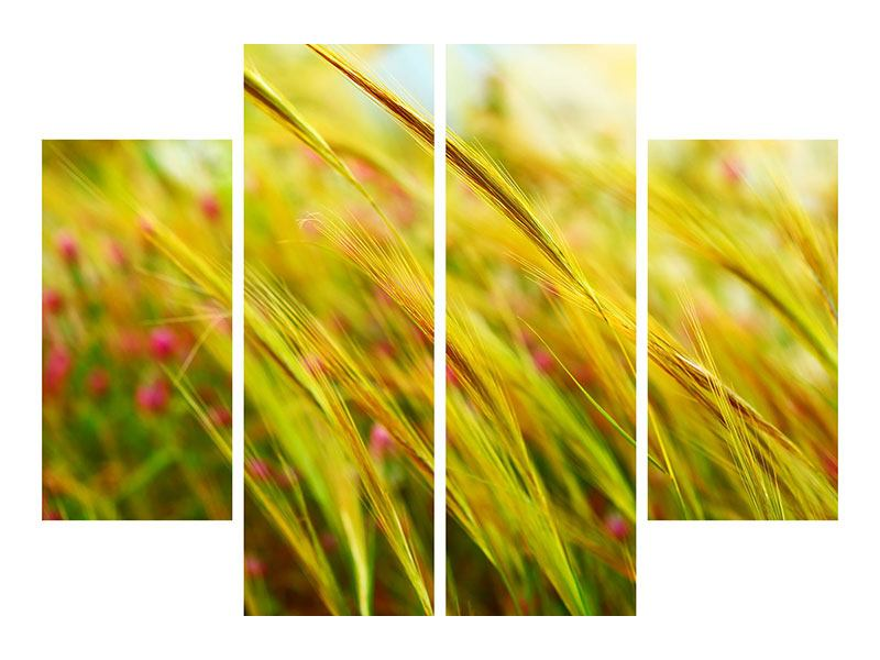 Leinwandbild 4-teilig Das Weizenfeld
