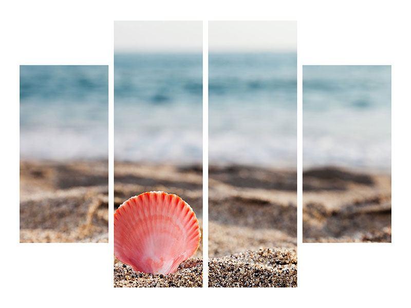 Leinwandbild 4-teilig Die Muschel