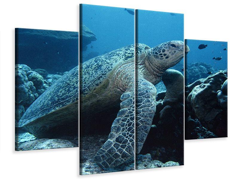 Leinwandbild 4-teilig Die Meeresschildkröte