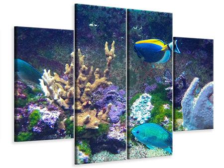 Leinwandbild 4-teilig Fische