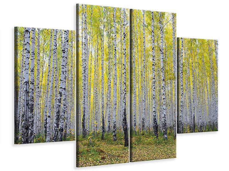 Leinwandbild 4-teilig Herbstlicher Birkenwald