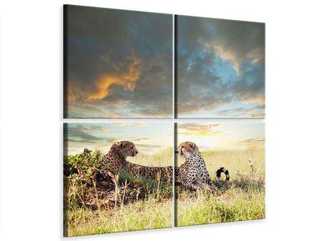 Leinwandbild 4-teilig Geparden