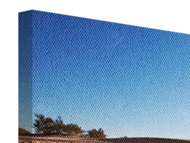 Leinwandbild 4-teilig Dürre