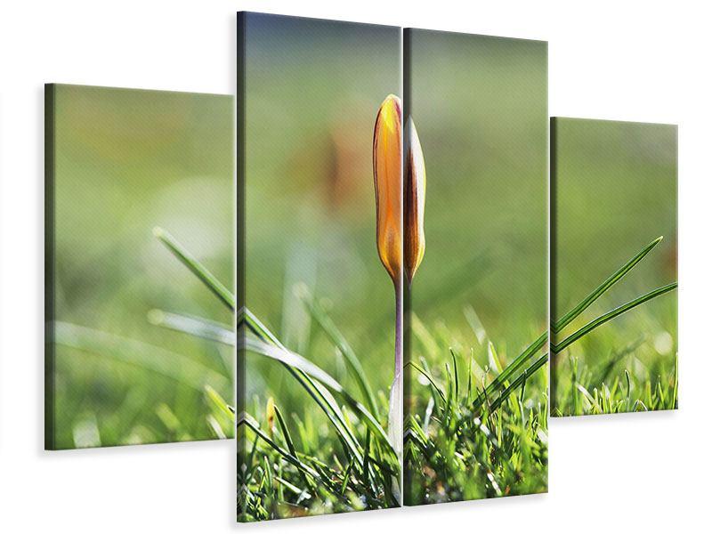 Leinwandbild 4-teilig Die Blütenknospe