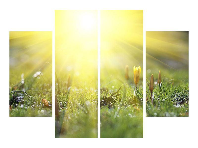 Leinwandbild 4-teilig Blumige Wiese