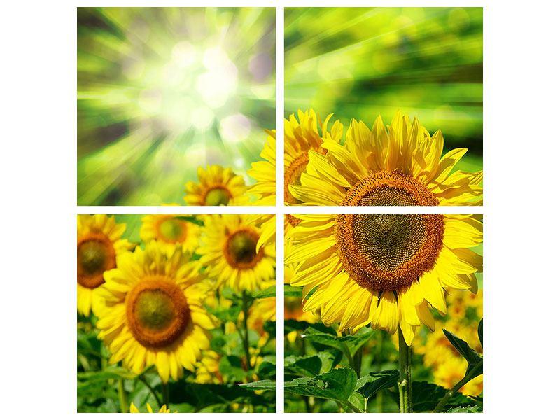 Leinwandbild 4-teilig Die Sonne und die Blumen