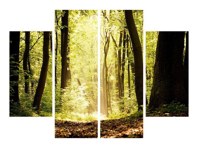 Leinwandbild 4-teilig Sonnenaufgang im Wald